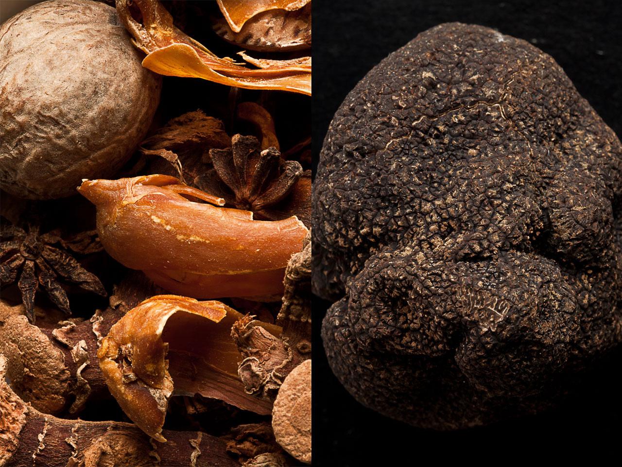 Noix de Pécan et truffe