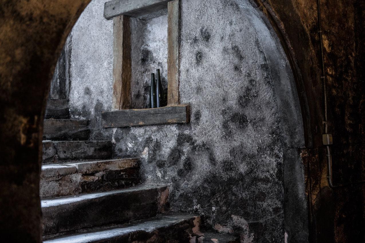 Cave en Alsace
