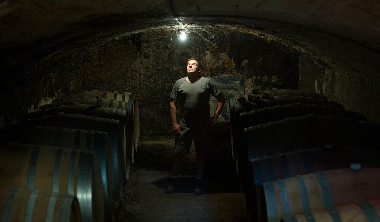Vigneron dans sa cave